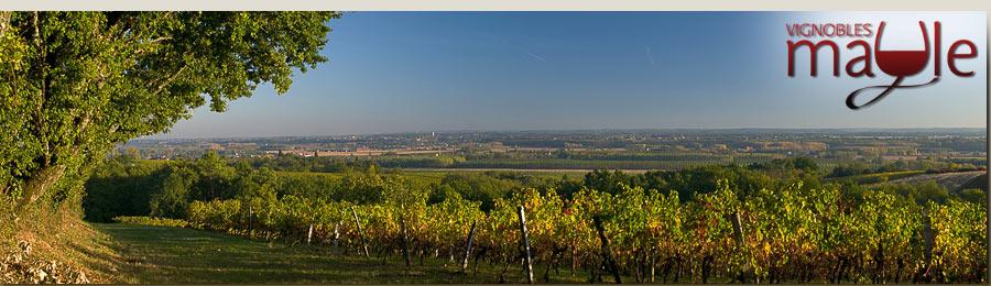photo Chateau de Perre Bordeaux